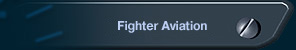 Fighter Aviation